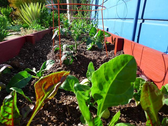 Garden 2.0