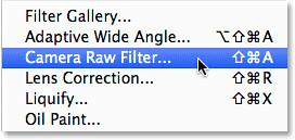 select-camera-raw-filter