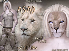 Asad white LION avatar