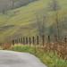Ogden Clough by alex987854