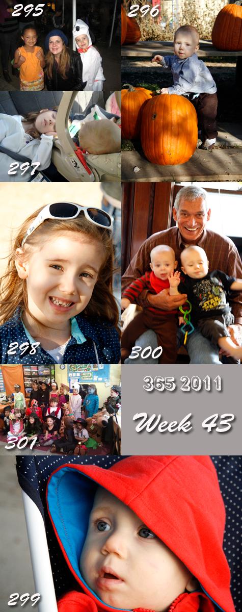 365 2011 Week 43