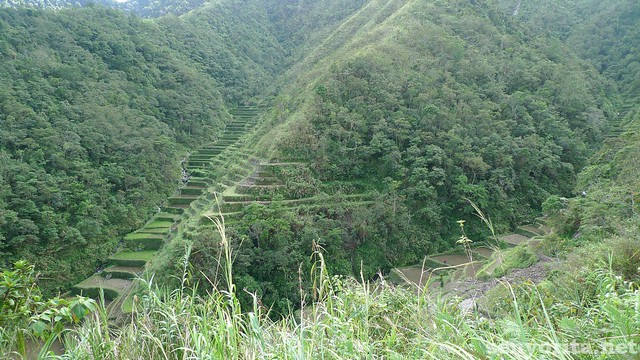Another rice terraces seen along the way