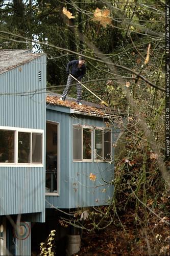 rooftop rachel, sweeping leaves    MG 2682