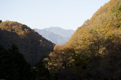 japan jr autumm 飯田線 秘境駅号