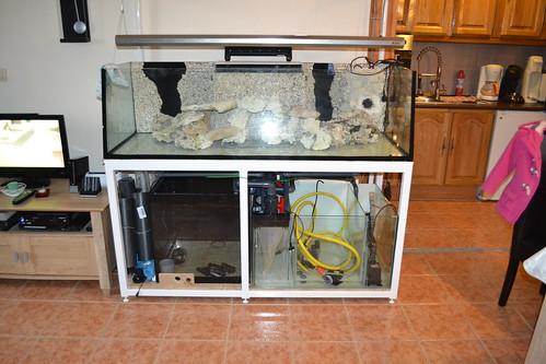 Luc's shallowreef tank 6452681645_58feb9cd66