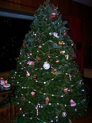 Christmas tree 2011