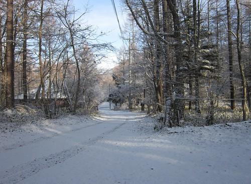 山荘前道路の積雪 2011年12月7日8:36 by Poran111