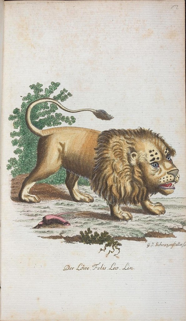 stylised Lion in 19th c. book by Johann Bechstein