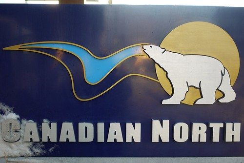 Canadian North Polar Bear