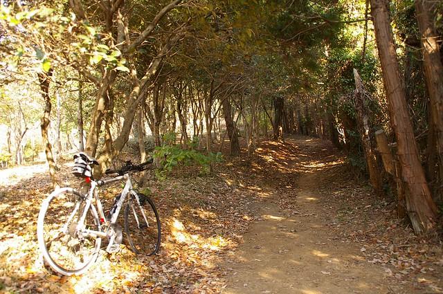 福山城跡へ #1
