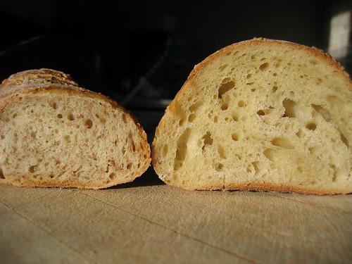 AB5: crumb comparison, wheat vs. white