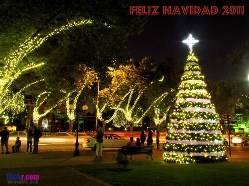 .:: FELIZ NAVIDAD 2011 ::. by Pablo C.M || BANCOIMAGENES.CL