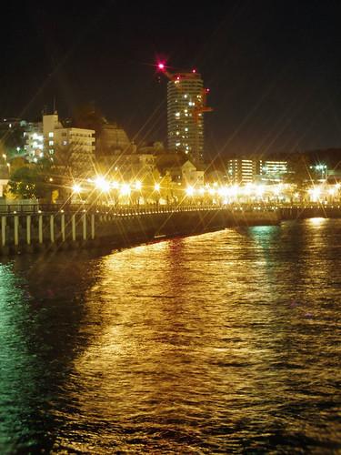 Yokosuka_Sarushima_11
