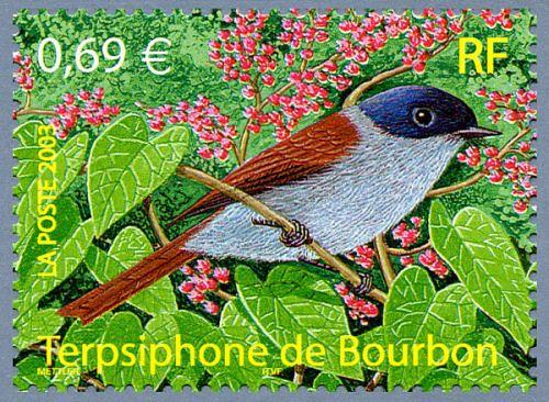 Terpsiphone de Bourdon