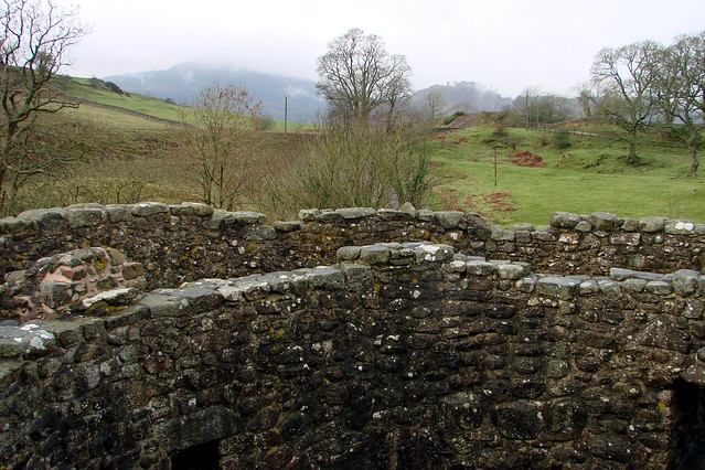 From the Top of Orchardton Tower