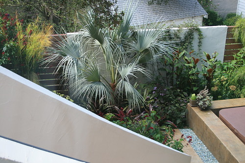 View of garden from lower bathroom window