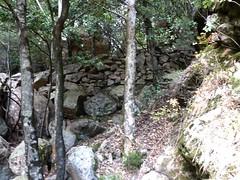 Dans la brèche du Carciara : les restes du chemin d'exploitation