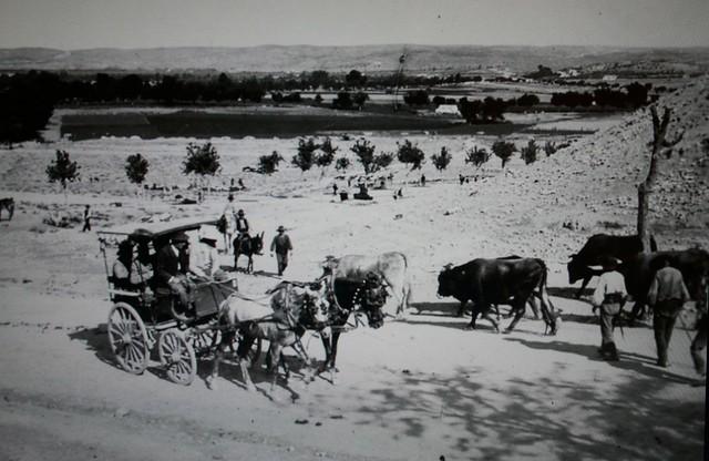 Carruaje en Toledo procedente de la Vega Baja a principios del siglo XX