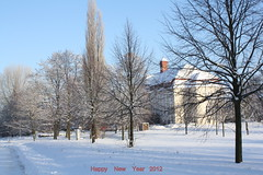 Happy New Year 2012 IMG_0138