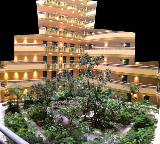 ビーチタワー沖縄の中《その2》20階以上ある建物の真ん中で、これだけの緑を維持管理するのって大変だろうな。