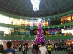 Manila Ocean Park Christmas Tree