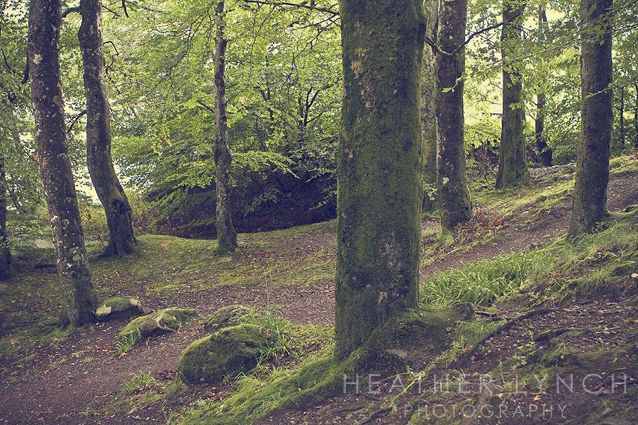 HeatherLynchPhotography_SCO3