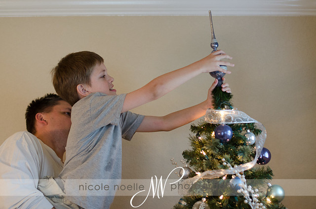 "Noah topping the ""blue tree"""