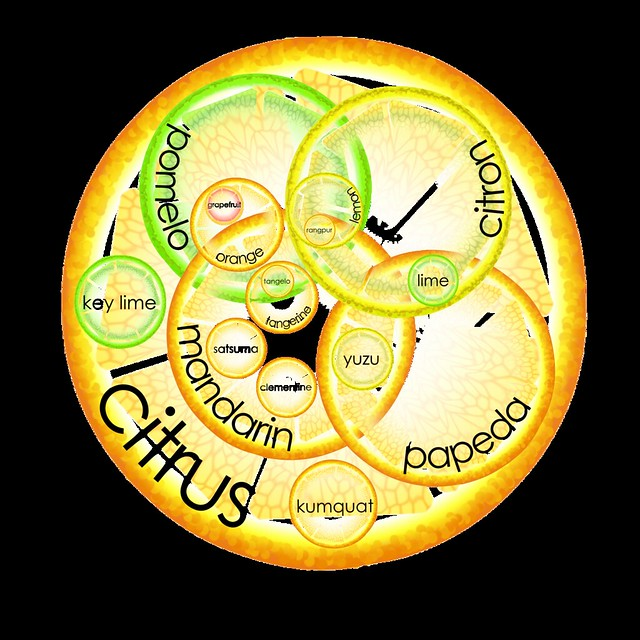 Citrus Venn diagram