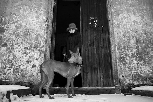 Dog in the Door - 35 Fantastic Black and Whiite Street Photographs