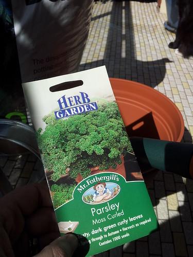 First herbs