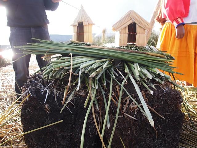 Puno & Lake Titicaca-29