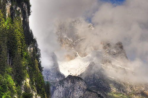trees light mountain snow alps green nature fog clouds landscape schweiz switzerland photo nikon swiss 2011 d90 ceca