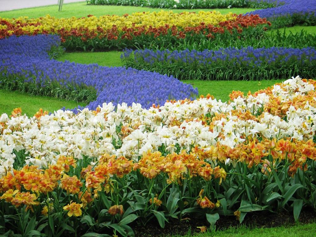 photo essay keukenhof the world s largest flower garden i