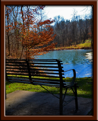cemetery bench landscape pond sunny haunted asylum lightroom