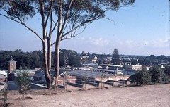 Martindale, view from rear yard in 1980.