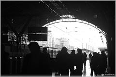 23. Extraños en un Tren