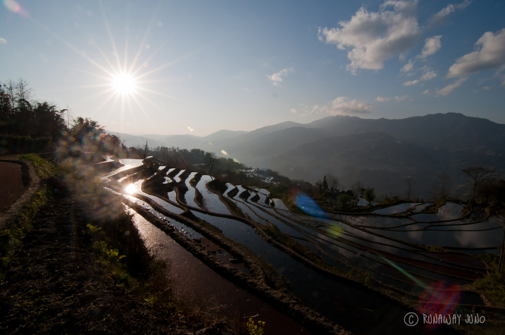 Yuanyang Rice Terrace in Sunset