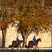 Deux Chevaux - 2 Horse Power