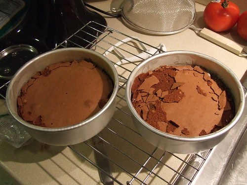 Chocolate sponge cake fail