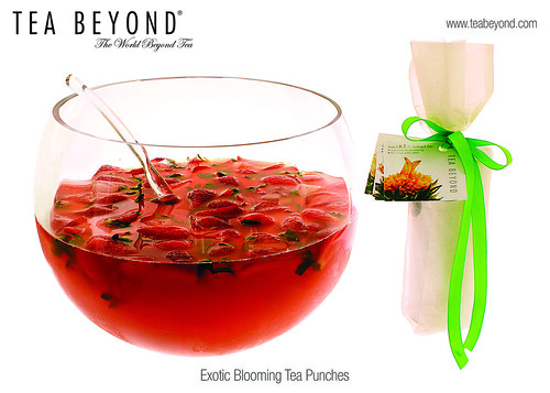 Product appl lightly alcoholic tea punches 2 hi res-TeaPunch-5x7