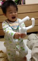 鴨居ハンガーで大はしゃぎするとらちゃん(2012/2/6)