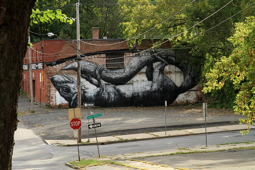 Albany (NY) - Living Walls 2011
