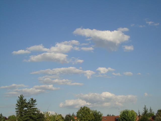 Cumulus_humilis