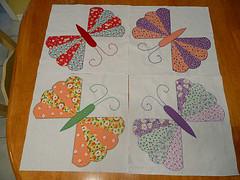 4 dresdan butterflies