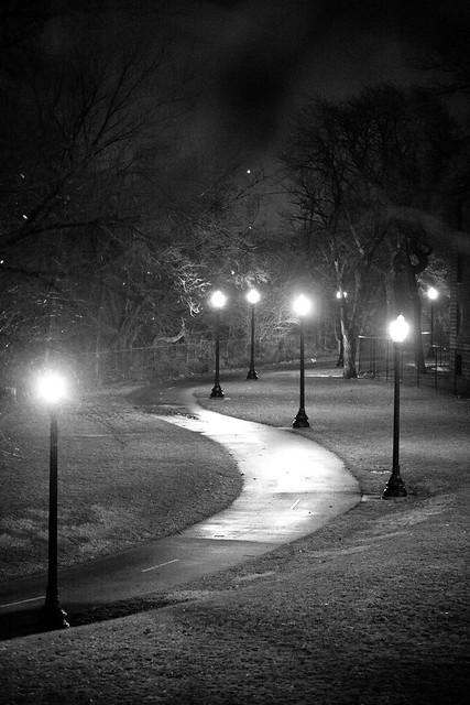 239/365 - Winding Path