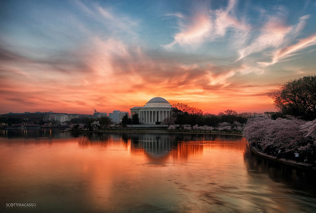 Glorious Sunrise at Jefferson Memorial (AS3A8878-sig) (Honorable Mention, FotoWeekDC 2014 Cherry Blossom Photo Contest)