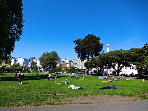 sunny day in Washington Square Park San Francisco