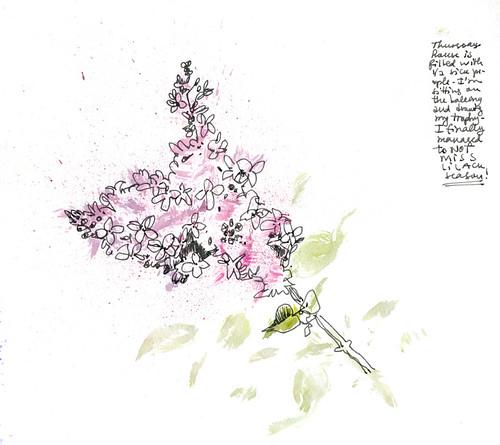April 2014: Lilac Season