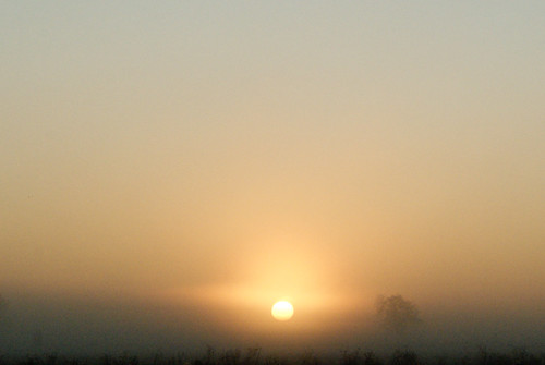 Sunrise on a foggy morn