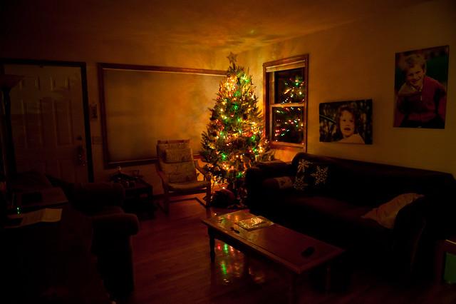 11-27-11_ChristmasTree_043